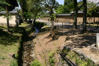 Channelized Stream, Nara